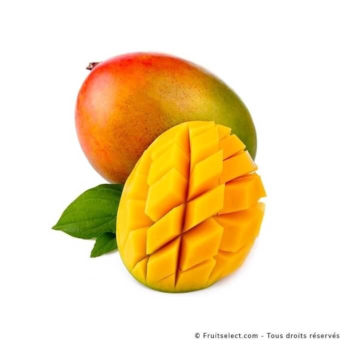 Mangue kent