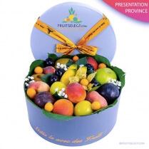 Fruit Pastel Province