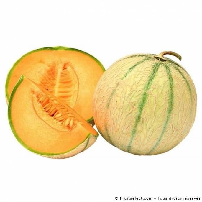 1 Melon Extra